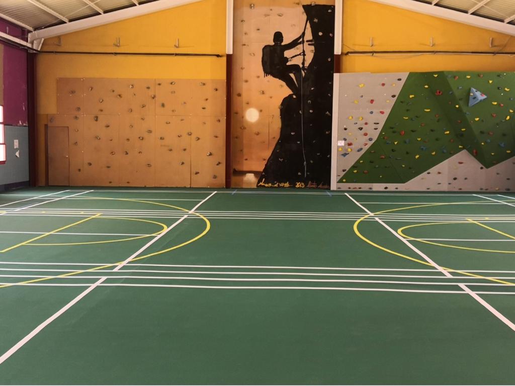 Wollsport Indoor para suelos deportivos interiores y rocódromos